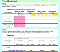 Your Heartbeat Excel Worksheet